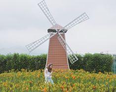 Taichung, Taiwan: Houli Flower Farm, Rainbow Village and Sun Moon Lake Travel Ootd, Us Travel, Taiwan Itinerary, Taipei Travel, Sun Moon Lake, Ootd Spring, Insta Photo Ideas, Flower Farm, Travel Photography