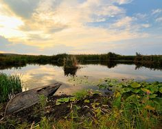 Minunile României: ce locuri din țară sunt incluse în patrimoniul mondial UNESCO | Historia