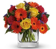 """Buy """"Citrus Splash A37"""" for $95.00. Bold, Beautiful Gift For Any Happy Occasion."""