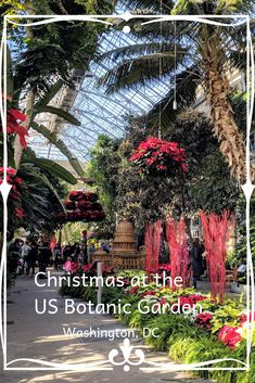 The US Botanic Garden, a living plant museum, goes all out for the holiday season. The displays are stunning and a stroll through the special exhibits and the gardens will surely please the senses. Usa Travel Guide, Travel Usa, Canada Travel, Travel Guides, Travel Tips, Travel Couple, Family Travel, Cool Places To Visit, Places To Travel