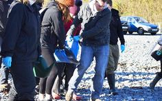 <p>A stranded dolphin was rescued from Polpeor Cove in Cornwall, UK, thanks to a walker who was determined to help. </p>