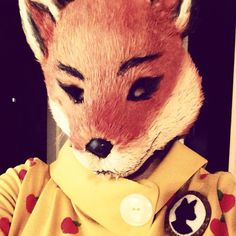 """I'm a big fan of Wes Anderson's movies. As far as I'm concerned, """"twee"""" isn't a bad word, and Fantastic Mr. Fox, his adaptation of the 1970..."""