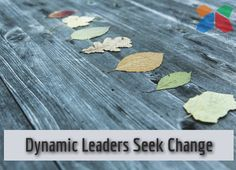Dynamic leaders seek change. He or she sees the advantage of continuous professional growth. Today, we share 10 leadership tips from Highlands Certified Consultants for those who aspire to be a dynamic leader. http://www.highlandsco.com/dynamic-leadership-tips/