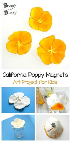 California Poppy Magnets Flower Craft for Kids - Buggy and Buddy - California Poppy Magnet Flower Craft for Kids: Using Crayola Model Magic. A fun craft and art proje - Poppy Craft For Kids, Diy Crafts For Kids, Projects For Kids, Fun Crafts, Art For Kids, Simple Crafts, Kids Fun, Model Magic, Art Therapy Activities