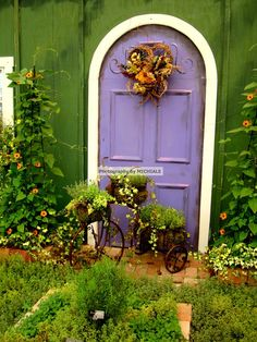 Purple Door & more!