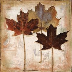 Nautral Leaves III