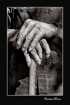 Working Hands. A farmer from Minnesota - Ansel - who farmed with a horse drawn plow.