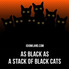 """As black as a stack of black cats"" means ""very black"". Example: After playing in the mud all morning, the little boy was as black as a stack of black cats."
