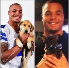 Cowboys Coach, Dallas Cowboys Football, How Bout Them Cowboys, Dak Prescott, Mississippi State, Cheerleading, Nfl, Puppies, Pet Stuff