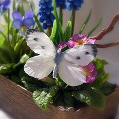 Бабочка капустница ручной работы, из флористической полимерной глины. #ТатьянаПянзина #бабочка #керамическаяфлористика #полимернаяглина #холодныйфарфор  #декор #интерьер #длядома #цветыизглины   #handmade