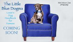 www.thelittlebluedog.com  Promoting the humane choices about family pets, and the dog's perspective on adoption, rescue, training and other canine related topics!