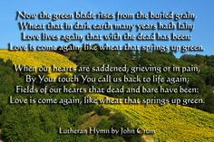 Now the green blade rises from the buried grain.   Lutheran Hymn.