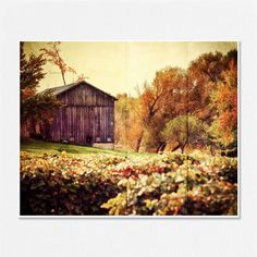Barn Picture - Rustic Farm Landscape - Barn Photograph - Tuscan home decor - Country Decor - 8x10 - Brown, coffee, gold, orange, yellow