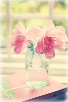 first roses by lucia and mapp, via Flickr
