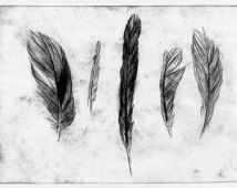 Fine Art Feathers Etching, ORIGINAL PRINT, Etching Print, Etching Printmaking, Feather Art Print, Feather Illustration Black Minimalist Art