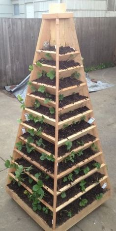 Vertical Garden Pyramid Planter Tower. Saw planters like this at Disney's Epcot Flower & Garden Festival.