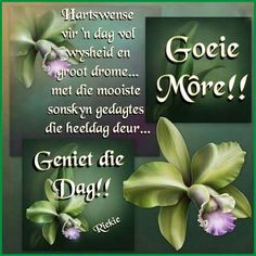 Pin it! Morning Blessings, Good Morning Wishes, Day Wishes, Good Morning Quotes, Best Quotes, Life Quotes, Qoutes, Lekker Dag, Evening Greetings