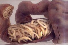 Очищение кишечника от паразитов в домашних условиях.  Вы узнаете: Почему следует избавляться от паразитов, обитающих в кишечнике. Как правильно проводить очищение кишечника от паразитов в домашних условиях.