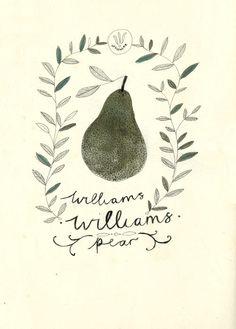 william pear