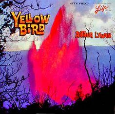 http://3.bp.blogspot.com/-yhKIWTtOI5c/UmmLxfqPgOI/AAAAAAAAC1o/jw2JCuhb23s/s1600/yellow+bird.jpg