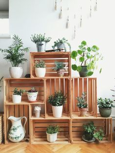 Crates in my living room corner. Crates as plant stands. Succulents and other indoor plants. You are in the right place about Suculentas Interior, Decoration Plante, Diy Casa, Crate Furniture, Furniture Ideas, Furniture Online, Corner Furniture, Pool Furniture, Wooden Furniture