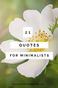 Get inspired by to live a minimalist lifestyle by reading these 21 minimalist quotes to begin your minimalism journey today. Minimalist Living Tips, Becoming Minimalist, Minimalist Quotes, Minimalist Lifestyle, Business Motivational Quotes, Inspirational Quotes, Business Quotes, Minimalism Blog, Intuition Quotes