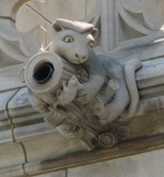 Washington National Cathedral Gargoyles: Catty Aide (4) in Washington, D.C. by Constantine Seferlis, Donald Miller