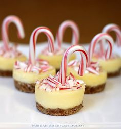 Sweet Tooth Pick of the Day: White Chocolate Peppermint Mini Cheesecakes - Korean American Mommy Brownie Desserts, Oreo Dessert, Mini Desserts, Coconut Dessert, Christmas Desserts Easy, Christmas Sweets, Dessert Recipes, Christmas Cookies, Christmas Christmas