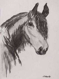 Koń Szkic węglem, A4
