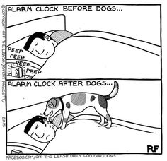 by Rupert Fawcett Haha Funny, Funny Dogs, Dog Scrapbook, Scrapbooking, Dog Jokes, Cartoon Dog, Dog Cartoons, Laugh A Lot, Cute Comics