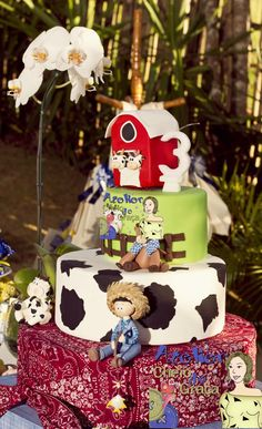 Farm Party-The Cake