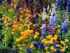 Garten Gestaltung Ideen Frühling Blumen Flieder