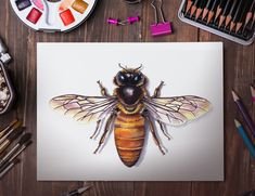 Watercolor Bee Poster by Martha Iserman aka Big Red Sharks Studios Natural World, Natural History, Watercolor Images, Sharks, Studios, Illustration Art, Bee, Handmade Gifts, Artist