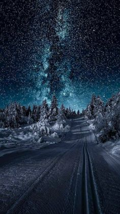 Winter Szenen, Winter Night, Clear Winter, Snow Night, Winter Season, Winter Road, Winter Blue, Winter Magic, Cool Pictures