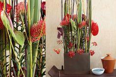 Upright arrangement