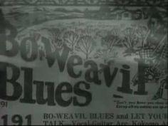 Billie Holiday - Strange fruit...