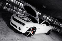GREAT PHOTO THREAD - Camaro5