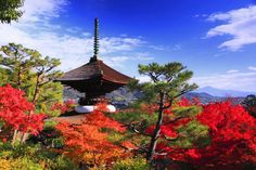 Tahoto Tower - UniversalImagesGroup/UIG via Getty Images/Getty Images