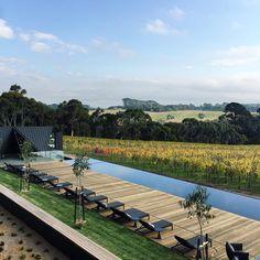 Jackalope   Mornington Peninsula Garden Pool, Hot Springs, School Design, Outdoor Furniture, Outdoor Decor, Sun Lounger, Melbourne, Swimming Pools, Travel Destinations