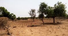 Degraded farmland in Nigeria