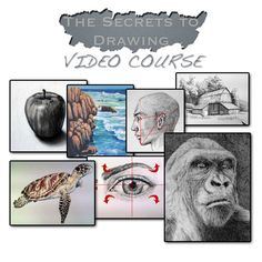 The Secrets to Drawing | TheVirtualInstructor.com Members