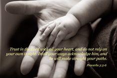Proverbs 3:5-6 <3