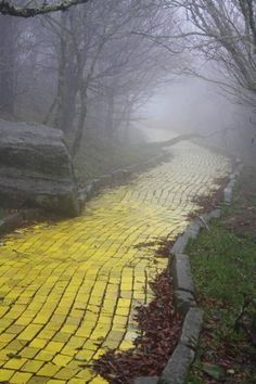 The Yellow Brick Road in The Land of Oz ~ a once popular theme of the 70's, the park was abandoned after theft and fire.  Land of Oz opens once a year to salute the great classic after some yearly renovations. #Oz #yellow_brick_road