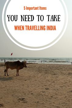 5 IMPORTANT ITEMS YOU NEED TO TAKE WHEN TRAVELLING INDIA - Anita Hendrieka