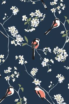 bird wallpaper Pretty pink birds sit on a navy blue background with white blossoms in this beautiful bird wallpaper. Perfect for a feature wall in lounges, bedrooms or offices. Blue Wallpaper Bedroom, Blue Wallpaper Iphone, Navy Wallpaper, Feature Wallpaper, Blue Wallpapers, Pattern Wallpaper, Pink Wallpaper Birds, Blue Feature Wall Bedroom, Beautiful Bird Wallpaper
