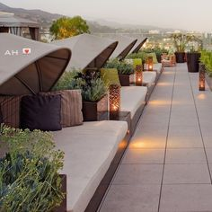 LOVE The Sundeck at the Andaz West Hollywood