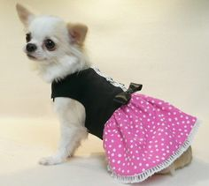 Dog Clothes Glamour Girl Party Dress