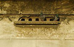 kuş evi- ayazma camii