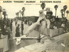them-thangs: so much skate stuff, misfits, thrasher