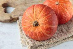 orange und lecker hokkaido k rbis anpflanzen tipps zu aussaat standort und pflege garten. Black Bedroom Furniture Sets. Home Design Ideas